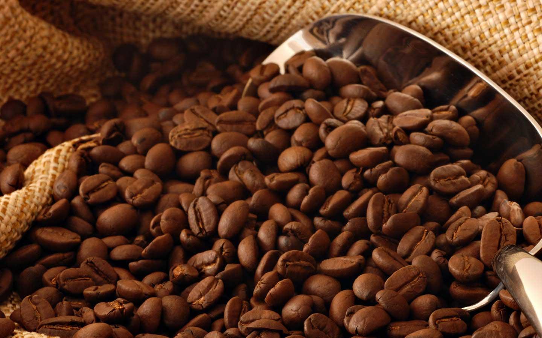 Freshly roasted Origin Coffee beans